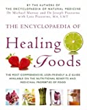 The Encyclopaedia of Healing Foods (0316731900) by Murray, Michael