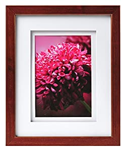 Carr Gallery Frame With Air Float Mat 14 By 18 Inch