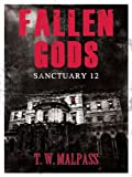 img - for Sanctuary 12 (Fallen Gods Saga) book / textbook / text book