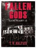 img - for Sanctuary 12 (Fallen Gods Saga) book / textbook / text book