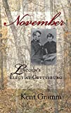 img - for November: Lincoln's Elegy at Gettysburg book / textbook / text book