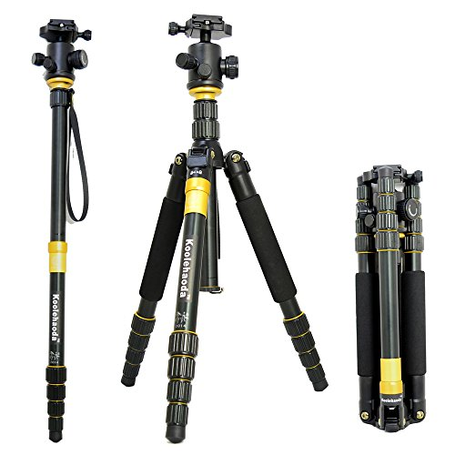 SLR Camera Tripod Monopod & Ball Head Portable Compact Travel
