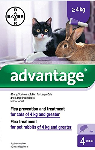 Bayer Advantage 80 (Purple) Spot On for Large Cats or Rabbits (Over 9 Lbs) 4 Month Supply (Multi Advantage For Cats compare prices)