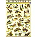 (27x39) Dinosaurs Chart Educational Poster