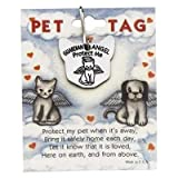 Guardian Angel Of cats Angel Protection Pet Pewter Charm Cat Medal