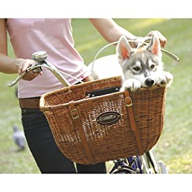 Rattan Wicker Pet Cruiser