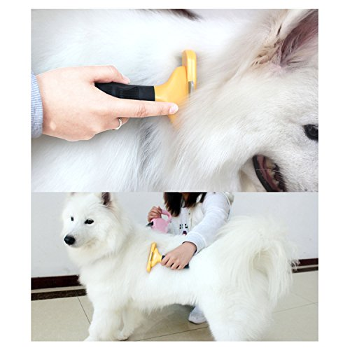 dog cat brush for shedding best long short hair pet grooming tool reduces dogs and cats. Black Bedroom Furniture Sets. Home Design Ideas