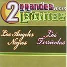2 Grandes Voces Latinas