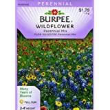 Burpee 31922 Wildflowers Perennial, Mixed Colors Seed Packet