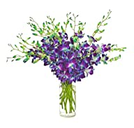 Blue Orchid Bouquet (20 Stems) – The…