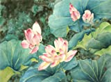"""Land of the Lotus"", Giclee Print of Original Sumi-e Flower Painting, 14 x 21 Inches"