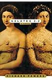 Galatea 2.2/a Novel