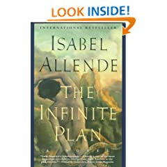 The Infinite Plan : A Novel