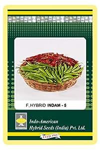 Indo American Hybrid Seeds IAHS35