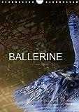 Ballerine: Photos de Cours de Ballet et de Chaussons de Danse.