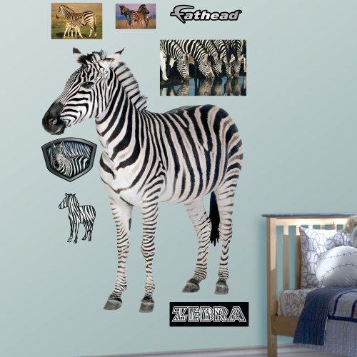 Fathead Zebra Graphic Wall Décor front-497862