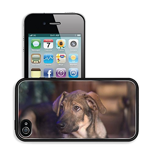 Luxlady Premium Apple iPhone 4 iPhone 4S Aluminum Backplate Bumper Snap Case IMAGE ID: 38333974 cute puppy crossbreed sheep dog is at home (Floor Model Fireplaces compare prices)