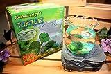 Animated Pet Turtle Aquarium