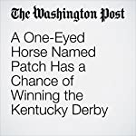 A One-Eyed Horse Named Patch Has a Chance of Winning the Kentucky Derby | Eliza McGraw