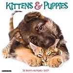 2017 Kittens & Puppies Wall Calendar