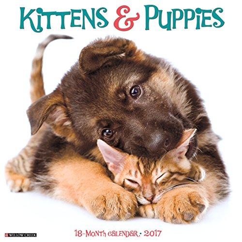 Kittens & Puppies 2017 Wall Calendar