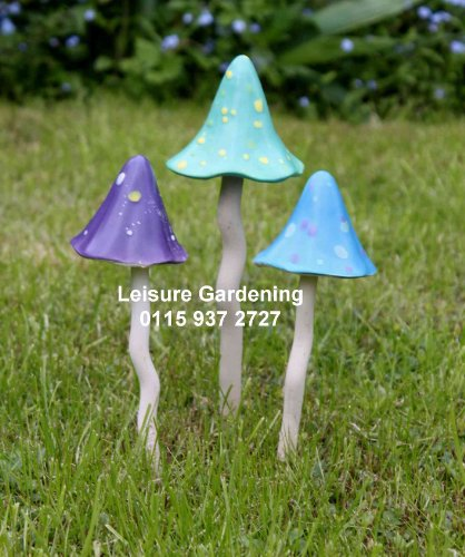 Timeless Toadstools, Set of 3 'Twilght' Shades