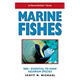 A PocketExpert Guide to Marine Fishes: 500+ Essential-To-Know Aquarium Species ~ Scott W. Michael