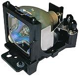 Go Lamps Ampoule pour projecteur Hitachi Dt01051