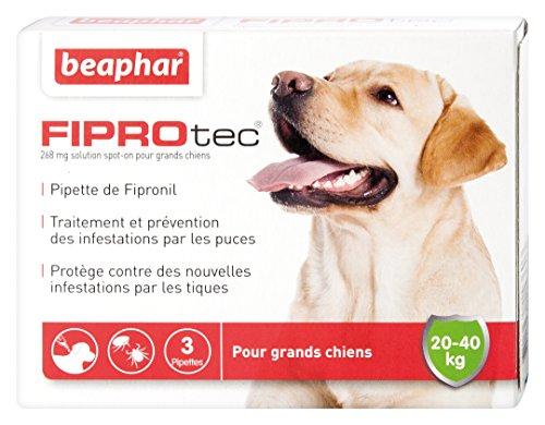 beaphar-fiprotec-pipettes-anti-puce-et-anti-tique-au-fipronil-grand-chien-de-20-a-40-kg-3-pipettes