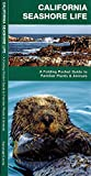 California Seashore Life: A Folding Pocket Guide to Familiar Plants & Animals (Pocket Naturalist Guide Series)