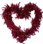 Cranberry De-luxe Feather Boa
