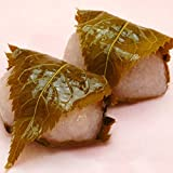 桜餅【6個】桜葉ごと食べます。 <<さくら色の道明寺生地がもっちもち!上品なこしあんと桜の香り♪関西風です>>