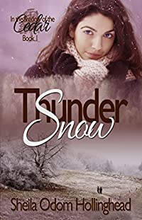 (FREE on 12/5) Thundersnow by Sheila Hollinghead - http://eBooksHabit.com