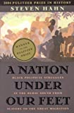 Image of Nation Under Our Feet : Black Political Struggles in the Rural South from Slavery to the Great Migration