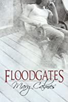 Floodgates (English Edition)