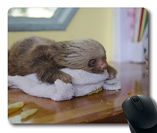 NEW-Custom-Fascinating-Mouse-Pad-with-Sloth-Lying-Animal-Towel-Non-Slip-Neoprene-Rubber-Standard-Size-9-Inch220mm-X-7-Inch180mm-X-18-Inch3mm-Desktop-Mousepad-Laptop-Mousepads-Comfortable-Computer-Mous