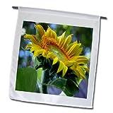 Beverly Turner Flora Photography - Side view of Sunflower - 12 x 18 inch Garden Flag (fl_17444_1)
