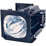 BP96-01795A - Lamp With Housing