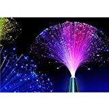 E&A 2Pcs Colourful Changing Fibre Fiber Optic Fountain Night light Calming Lamp Christmas Gift