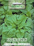 Premier Seeds Direct IPP26 16 g Spinach Gigante Inverno Pictorial Packet Seeds (Pack of 1600)