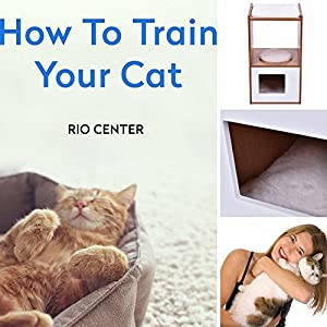 Kitten Beds,Double Deck Cat Box Cushion,Puppy Beds,Enclosure Hidden Pet Bed Furniture Wood & EBOOK HOW TO TRAIN YOUR CAT.