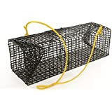 Willapa Marine Crawfish Trap