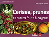 Cerises, prunes et autres fruits  noyaux