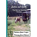 Jadon and Gabe:: The Not so Saintly Horses ~ Barbara Janet Cooper