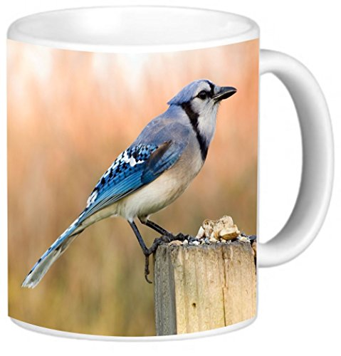 Rikki Knight Blue Jay Bird On Tree Trunk Design 11 oz Photo Quality Ceramic Coffee Mug Cup - Dishwasher and Microwave Safe