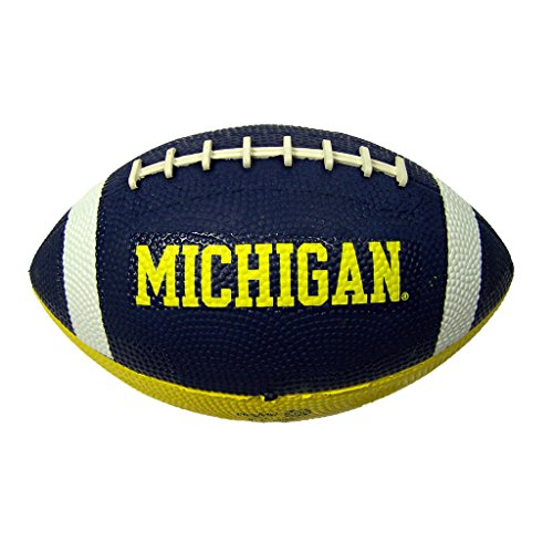 Michigan Wolverines Official NCAA Hail Mary Youth Size Football by Rawlings 660157 (Rawlings Footballs compare prices)
