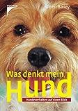 Was denkt mein Hund?: Hundeverhalten auf einen Blick - Gwen Bailey