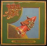 STEELEYE SPAN ROCKET COTTAGE vinyl record
