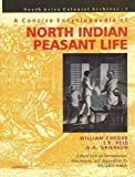 img - for Concise Encyclopaedia of North Indian Peasant Life book / textbook / text book