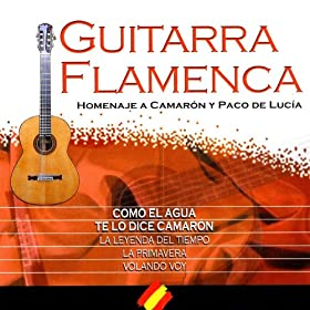 "N� 5 ""Your Songs On Spanish Guitar"" (Homenaje Flamenco A ""Camar�n De La Isla"")"